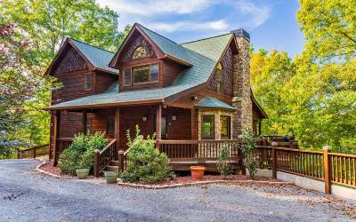 Gilmer County Single Family Home For Sale: 284 Vista Chalet Drive