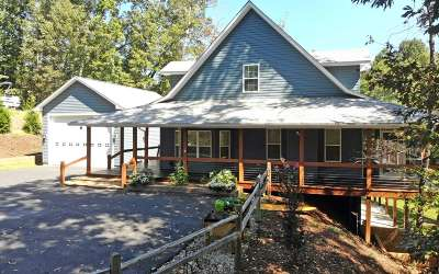 Blairsville Single Family Home For Sale: 493 Chapman Lane