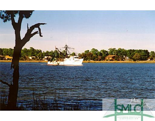 202 Noble View, Savannah, GA, 31411, Skidaway Island Home For Sale
