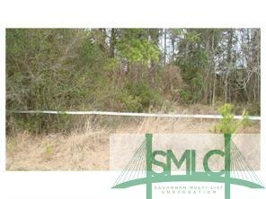12694 Oglethorpe, Midway, GA, 31320, Midway Home For Sale
