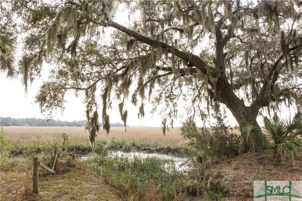 479 Butler, Savannah, GA, 31406, Savannah Home For Sale