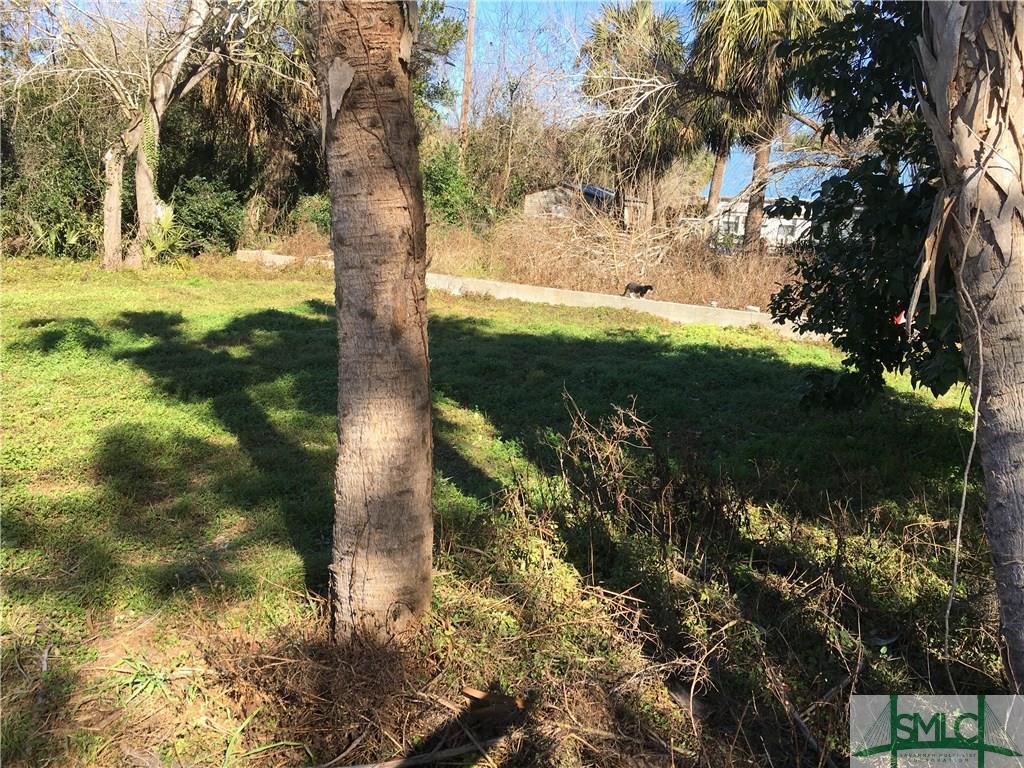 0 Sprucewood (Robinson), Tybee Island, GA, 31328, Tybee Island Home For Sale