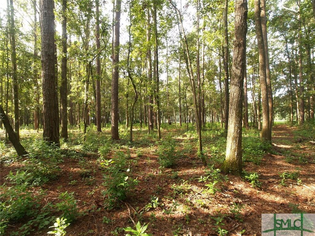 220 Belted Kingfisher, Richmond Hill, GA, 31324, Richmond Hill Home For Sale