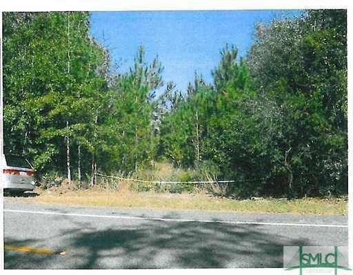 0 Hwy 204, Ellabell, GA, 31308, Ellabell Home For Sale