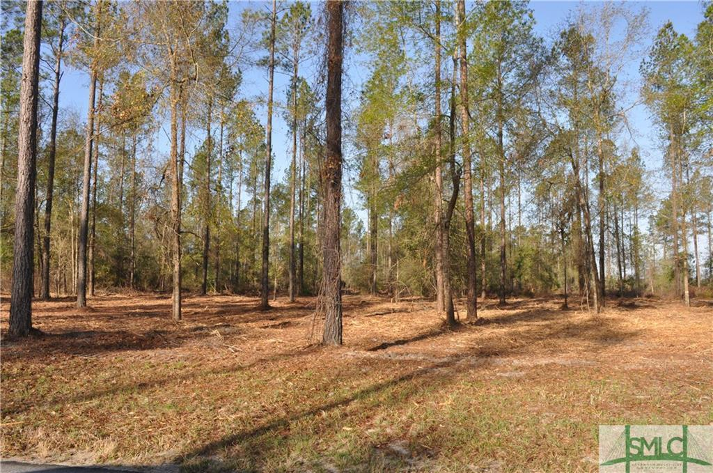 0 Captain Cone Lot # 11, Brooklet, GA, 30415, Brooklet Home For Sale