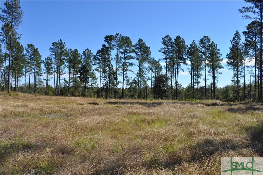 0 Captain Cone Lot #12, Brooklet, GA, 30415, Brooklet Home For Sale