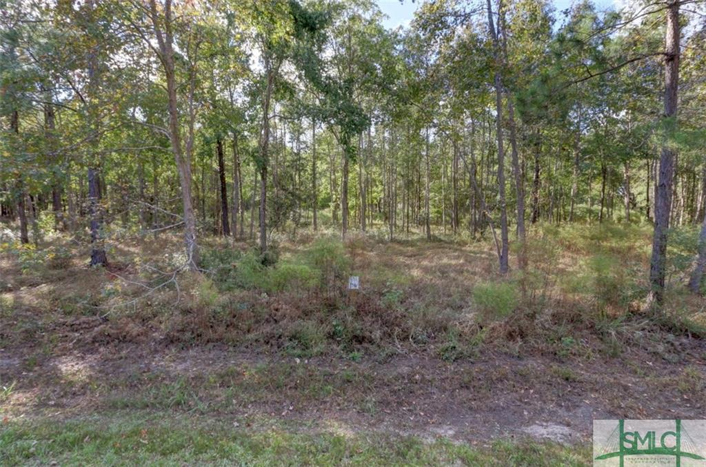 LOT 70 Telfair Plantation, Hardeeville, SC, 29927, Hardeeville Home For Sale