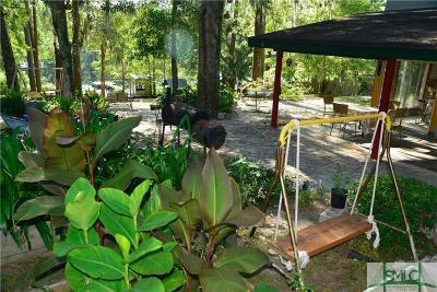 Ellabell Single Family Home For Sale: 371 Pine Ridge Drive