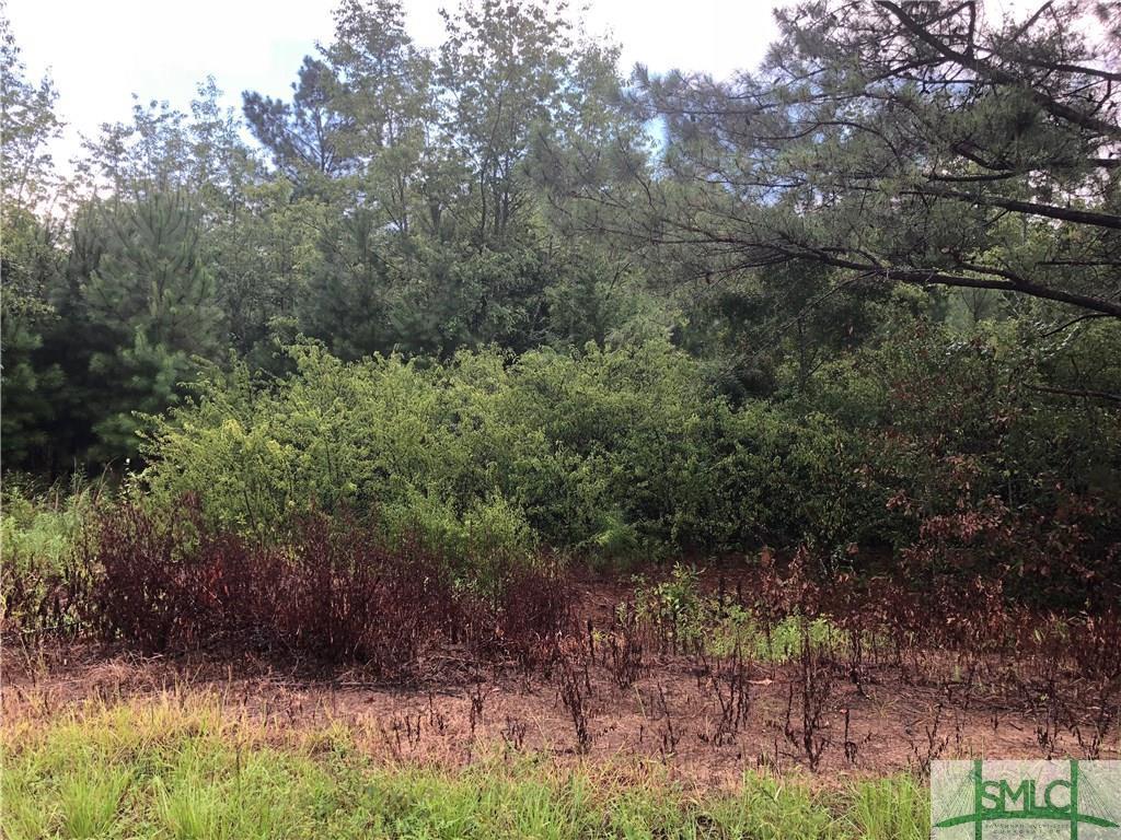 0 Joe Tillman, Statesboro, GA, 30458, Statesboro Home For Sale