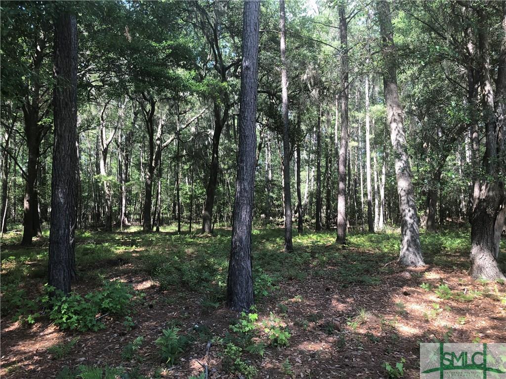 201 Wood Haven, Pooler, GA, 31322, Pooler Home For Sale