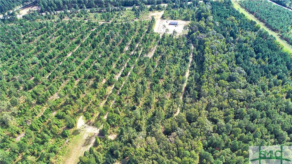 200 Peeples Farm, Sylvania, GA, 30467, Sylvania Home For Sale