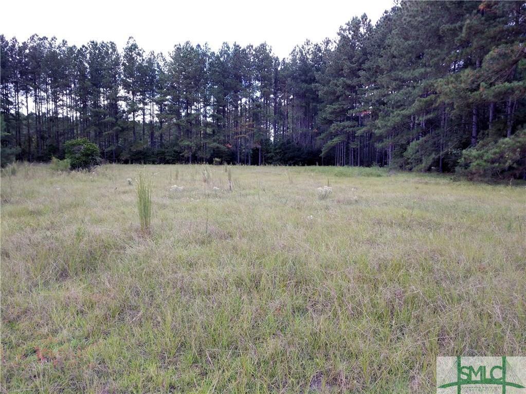 898 Runs Branch, Newington, GA, 30446, Newington Home For Sale