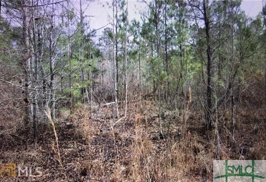 0 White Branch, Guyton, GA, 31312, Guyton Home For Sale