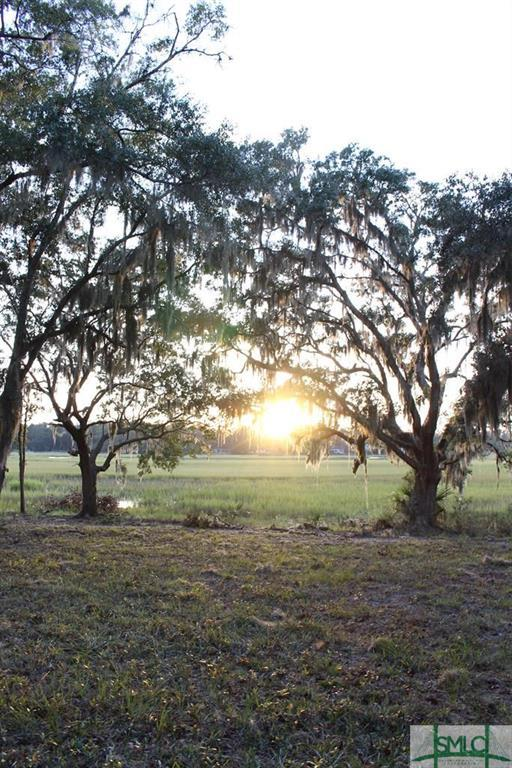 Lot 10 Woodstork, Townsend, GA, 31331, Townsend Home For Sale