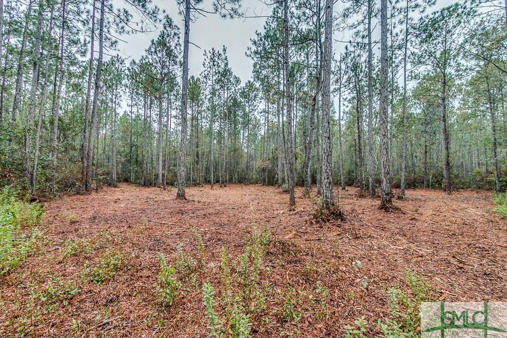 0 Mud, Brooklet, GA, 30415, Brooklet Home For Sale