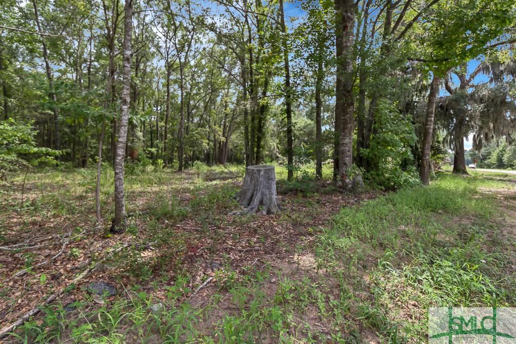 424 Oak Level, Richmond Hill, GA, 31324, Richmond Hill Home For Sale