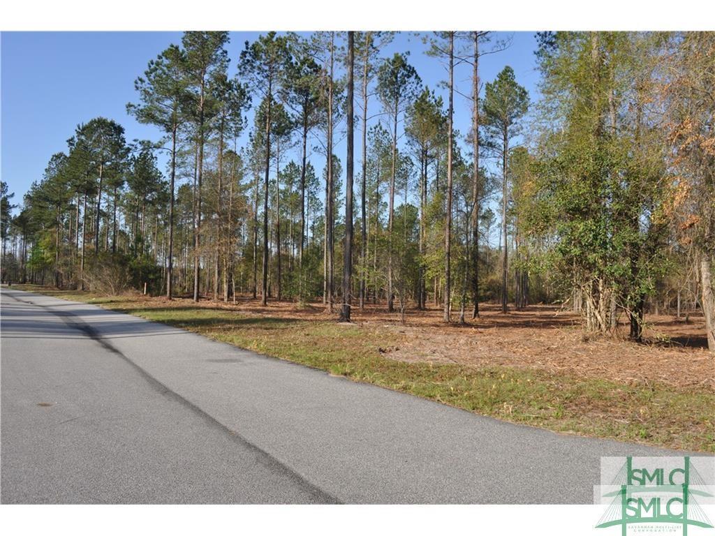 0 Bulloch Bluff Dr, Brooklet, GA, 30415, Brooklet Home For Sale