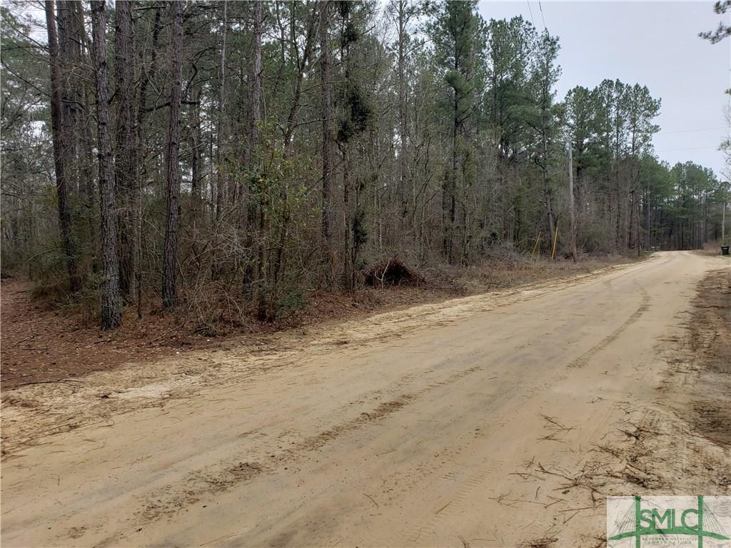 000 Lotts Creek, Claxton, GA, 30417, Claxton Home For Sale