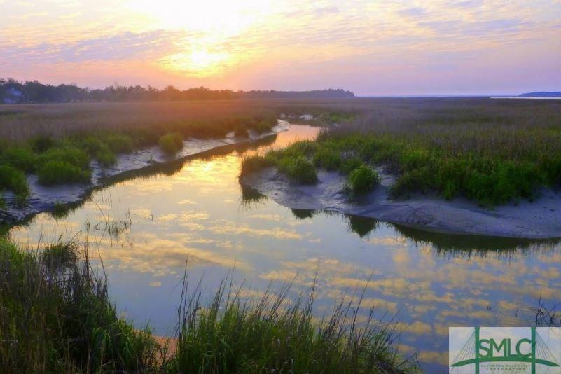 Lot 63 Cooper's Point, Townsend, GA, 31331, Townsend Home For Sale