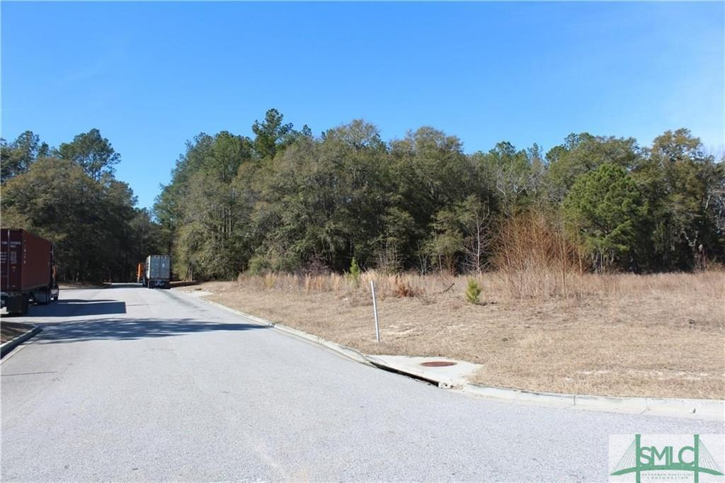 0 Hwy 21, Springfield, GA, 31329, Springfield Home For Sale