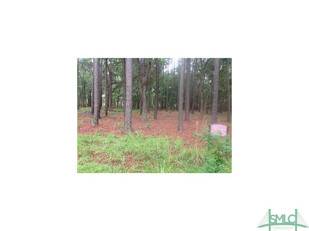 0 Lookout, Hampton Island, GA, 31323, Hampton Island Home For Sale