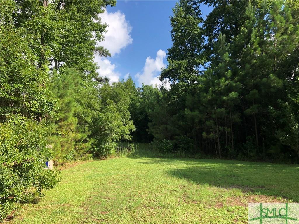 0 Hwy 17, Richmond Hill, GA, 31324, Richmond Hill Home For Sale