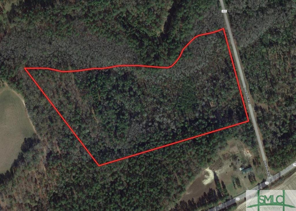0 Macedonia, Statesboro, GA, 30461, Statesboro Home For Sale