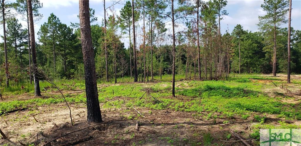 4 Modoc, Swainsboro, GA, 30401, Swainsboro Home For Sale