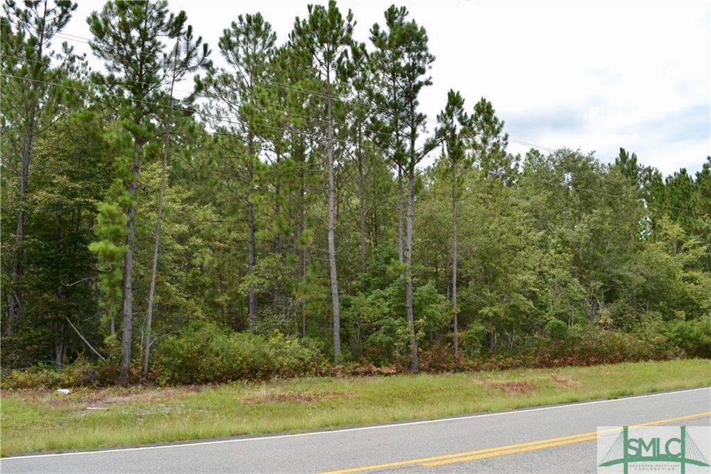 1699 Springfield, Clyo, GA, 31303, Clyo Home For Sale