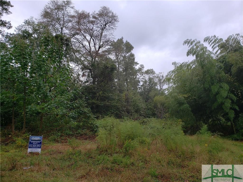 0 Ackerman, Rincon, GA, 31326, Rincon Home For Sale