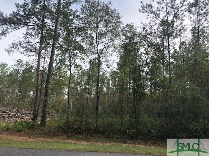 00 Berryville, Springfield, GA, 31329, Springfield Home For Sale