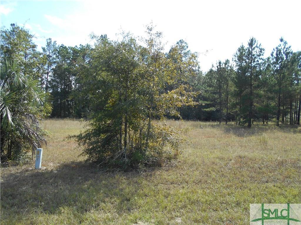 0 Blue Springs Road, Newington, GA, 30467, Newington Home For Sale