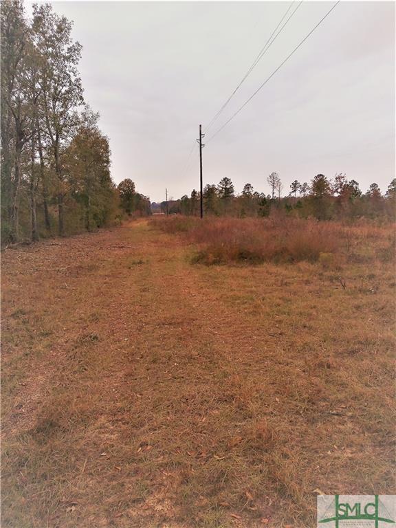 0 1st, Glenwood, GA, 30428, Glenwood Home For Sale