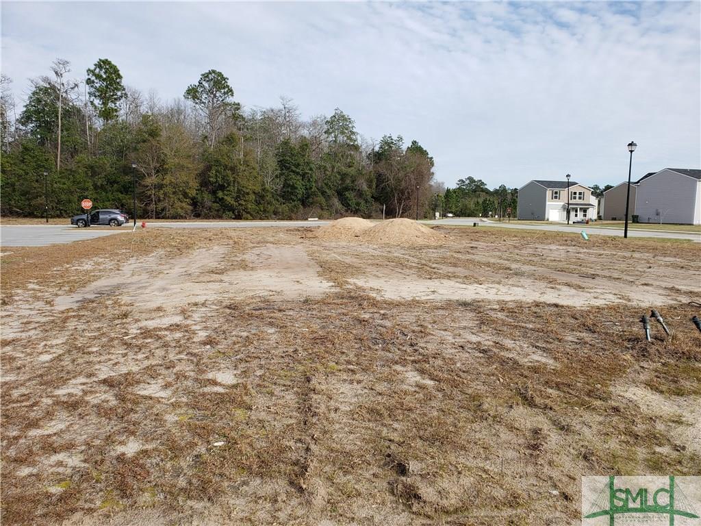 1 Terrell, Hinesville, GA, 31313, Hinesville Home For Sale