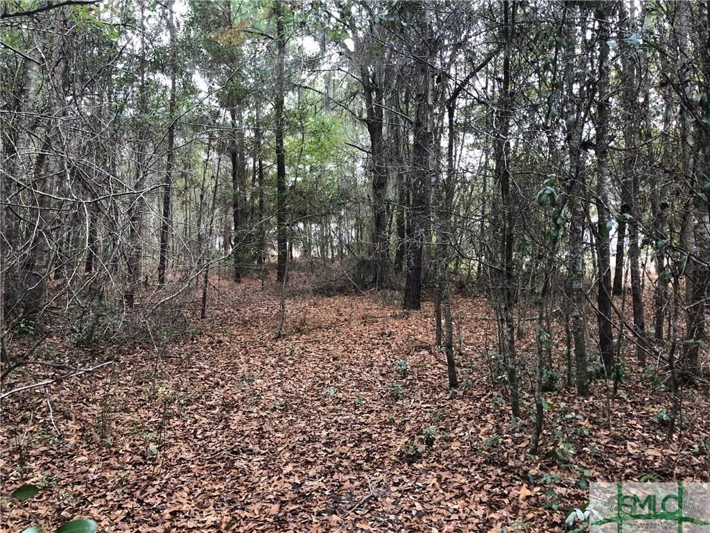 0 HG Miles LOT 33, Shellman Bluff, GA, 31331, Shellman Bluff Home For Sale