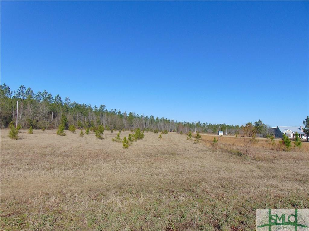 0 Stilson Leefield, Brooklet, GA, 30415, Brooklet Home For Sale