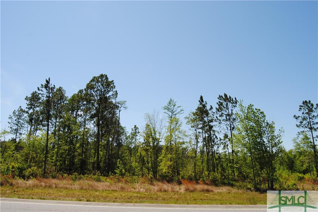 4375 Highway 21 N, Springfield, GA, 31329, Springfield Home For Sale