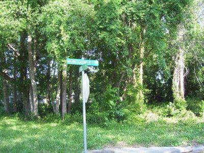 Waycross Residential Lots & Land For Sale: 0000 Montgomery Street