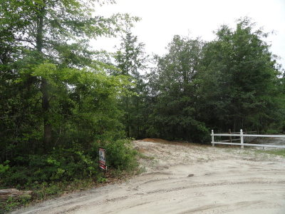Jesup Residential Lots & Land For Sale: Cruz Rd
