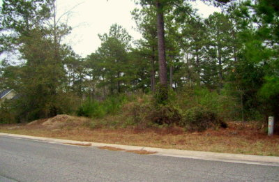 Waycross Residential Lots & Land For Sale: 00 Lejuene Rd Lot 14