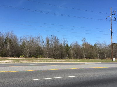 Residential Lots & Land For Sale: South Georgia Parkway