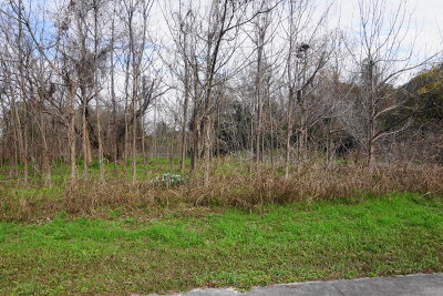Waycross Residential Lots & Land For Sale: 0000 Knight Ave Tract 1