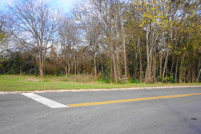 Waycross Residential Lots & Land For Sale: 0000 Knight Ave Tract 2