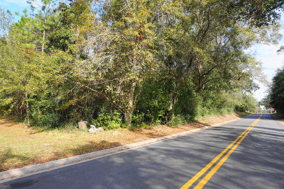 Waycross Residential Lots & Land For Sale: 0000 Hill St Tract 3