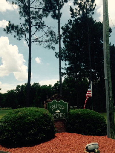 Blackshear Residential Lots & Land For Sale: Golfview Dr