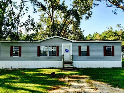 Offerman GA Single Family Home For Sale 79900