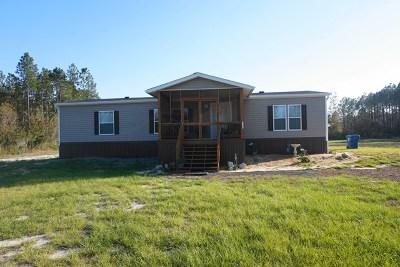 Waycross Single Family Home For Sale: 4820 Trail Rd