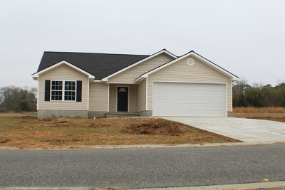 Blackshear GA Single Family Home For Sale: $149,900