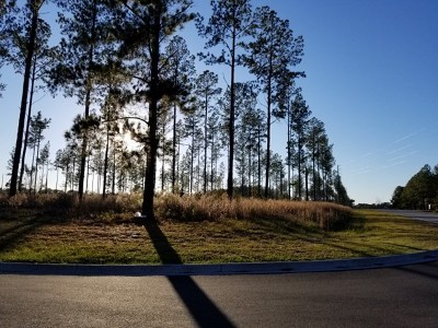 Alma Residential Lots & Land For Sale: Lake Lure Dr