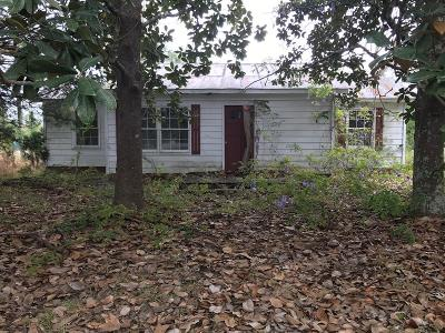 Homerville Single Family Home For Sale: 166 Thelma Hwy